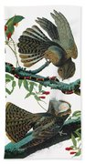 Audubon Chuck-will's Widow Bath Towel