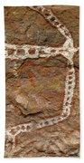 Indigenous Aboriginal Art Art 1 Bath Towel