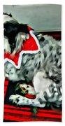 Australian Shepherd Christmas Dog Bath Towel