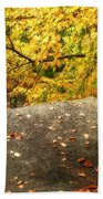 Autumn Boulder And Leaves Bath Towel