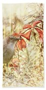 Autumn Catbird Bath Towel