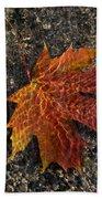 Autumn Colors And Playful Sunlight Patterns - Maple Leaf Bath Towel