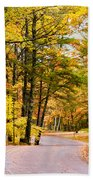 Autumn Colors - Colorful Fall Leaves Wisconsin - II Bath Towel