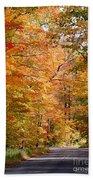Autumn Colors - Colorful Fall Leaves Wisconsin IIi Bath Towel
