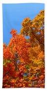 Autumn Contrasts Hand Towel