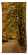 Autumn Country Road Bath Towel