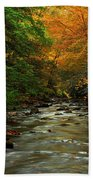 Autumn Creek Bath Towel