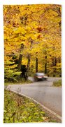 Autumn Drive Bath Towel
