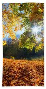 Autumn Fall Landscape In Forest Bath Towel