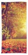 Autumn Fall Landscape In Park Bath Towel