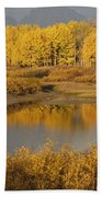 Autumn Foliage Surrounds A Pool In The Bath Towel