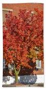 Autumn Glory Bath Towel