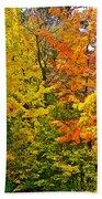 Autumn In Southwest Michigan Bath Towel