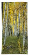 Autumn In The Aspen Grove Bath Towel