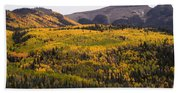 Autumn In The Colorado Mountains Hand Towel