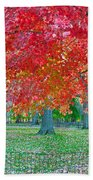 Autumn In Central Park Bath Towel