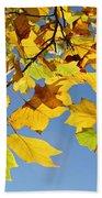 Autumn Leaves Of The Tulip Tree Bath Towel
