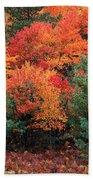 Autumn Maple Trees Bath Towel