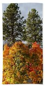 Autumn Maple With Pines Bath Towel
