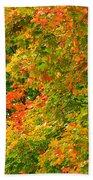 Autumn Mosaic Nj Bath Towel