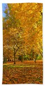 Autumn Park Bath Towel