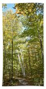 Autumn Pathway Hand Towel