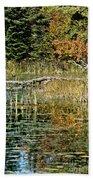 Autumn Pond Scene Bath Towel