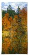Autumn Reflection Bath Towel