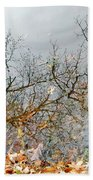 Autumn Reflections On Alloway Lake Nj Bath Towel
