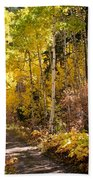 Autumn Road - Tipton Canyon - Casper Mountain - Casper Wyoming Bath Towel