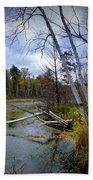 Autumn Scene Of Along The Shore Of The Platte River In Michigan Bath Towel