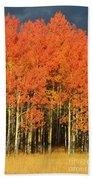 Autumn Splender  Bath Towel