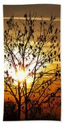 Autumn Tree In The Sunset Bath Towel