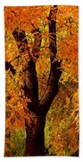 Autumn Tree Hand Towel