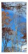 Autumn Trees And Heaven Bath Towel
