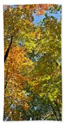 Autumn Woods Sky View Hand Towel