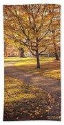 Autumnal Park Bath Towel