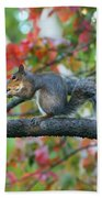 Autumnal Squirrel Bath Towel