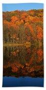 Autumns Colorful Reflection Bath Towel