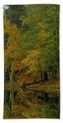 Autumns Reflection Bath Towel