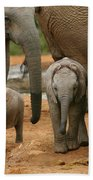 Baby African Elephants Bath Towel