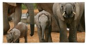 Baby African Elephants II Hand Towel