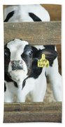 Baby Cow Bath Towel