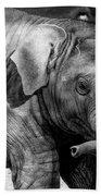 Baby Elephant Bath Towel
