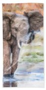 Baby Elephant Spraying Water Bath Towel