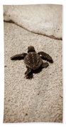 Baby Sea Turtle Bath Towel
