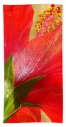 Back View Of A Beautiful Bright Red Hibiscus Flower Bath Towel