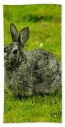 Backyard Bunny In Black White And Green Bath Towel