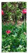 Backyard Tulips Bath Towel