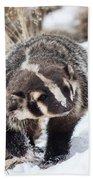 Badger In The Snow Bath Towel